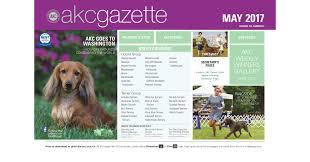 afghan hound group akc gazette may 2017