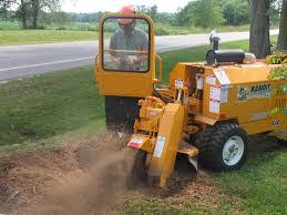 stump grinder rental near me rental hq stump grinders