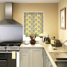 kitchen window blinds ideas window blinds blinds for kitchen windows lime roman blind ideas