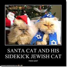 Merry Christmas Cat Meme - christmas critter humor because you can never have too many dogs or