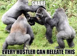 Gorilla Warfare Meme - image tagged in 682nd alpha engineers gorilla warfare imgflip