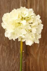 silk hydrangea white silk hydrangea flowers