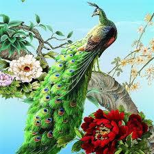 aliexpress com buy needlework diamond embroidery peacock pasted