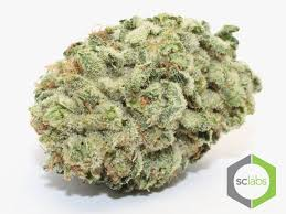 wedding cake kush cakes wedding cake strain strongest strains number 1