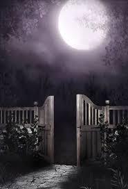 976 best moons images on pinterest beautiful moon full moon