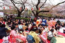 Flowers In Japanese Culture - spring in japan traveling clothing and weather in march may