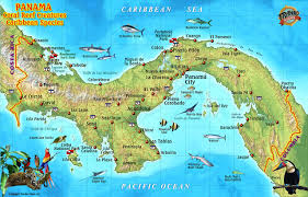 Coral Reefs Of The World Map by Panama Caribbean Coral Reef Creatures Guide Franko Maps Laminated