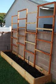 Privacy Screens For Backyards by Diy Privacy Planter Garden Pinterest Planters Gardens And