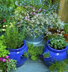 How To Keep Pests Away From Garden - how to keep bugs off flowers 5 simple ways balcony garden web