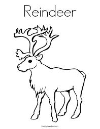 reindeer coloring twisty noodle