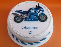 best 25 novelty birthday cakes ideas on birthday
