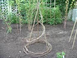 Grape Trellis For Sale Creative Garden Trellis Ideas Thriftyfun