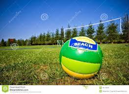 backyard volleyball stock photo image 43179824