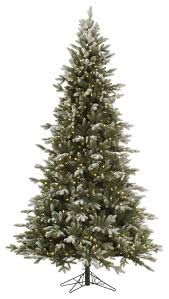 frosted balsam fir tree traditional trees by