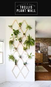 99 best diy decor plants u0026 gardening images on pinterest
