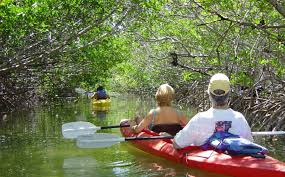 Cottage Rentals In Key West by Lazy Dog Key West Kayak And Paddleboard Tours Rentals And More