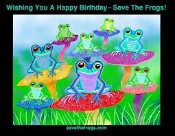 the 25 best happy birthday frog ideas on pinterest happy 11th