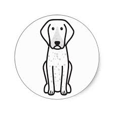 bluetick coonhound decals 42 best bluetick coonhound images on pinterest bluetick