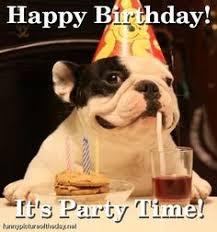 Birthday Dog Meme - dog birthday meme birthday meme funny dog dog happy birthday