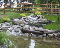 Aquascapes Pools 233 Best Zoo Images On Pinterest Zoos Gardens And Backyard Ponds