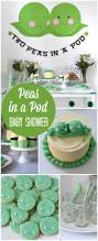 twin baby shower themes best inspiration from kennebecjetboat
