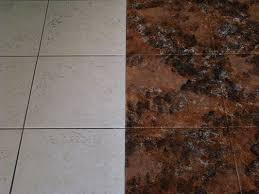 Cleaning Old Tile Floors Bathroom 41 Best Tile Images On Pinterest Kitchen Flooring Homes And