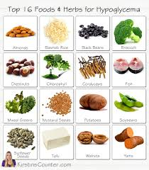 top 16 foods for hypoglycemia kirstin u0027s counter daily