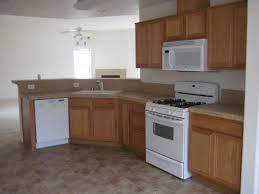 Remodeled Kitchen Cabinets Modern Ideas Kitchen Cabinet Spray Paint Cool And Opulent Spray