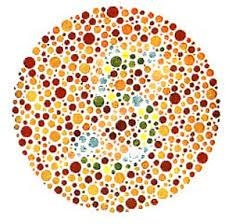 Color Blind Plate Test Red Green Color Blindness Test Two Docs U0027 Color Vision Tests