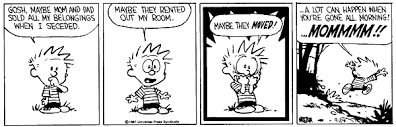 best calvin and hobbes stories