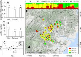 habitat si e social preservation of the genetic diversity of a local common carp in the