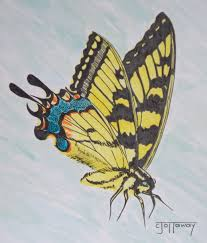 pencil sketch art designs photos pencil sketches of butterflies