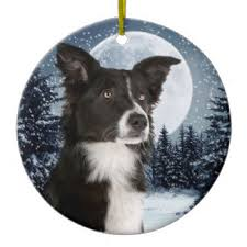 border collie ornaments keepsake ornaments zazzle