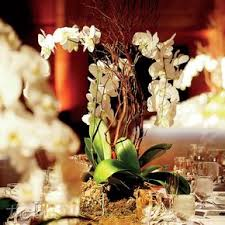 orchid centerpieces orchid wedding centerpieces