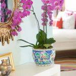 Modern Mirrors For Dining Room by Modern Mirrors For Dining Room Eclectic Bedroom By Way Of Caitlin