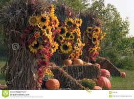 fall decorations fall decorations of pumpkins and flowers stock photos image