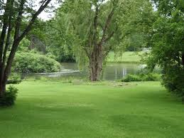 Southern Home Decor Stores Michaelpocketlist Ocmy Back Yard View In Upstate Ny Panorama