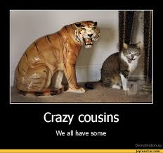Funny Cousin Memes - crazy cousinswe all have somede motivation us demotivation