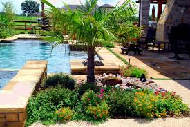 pool area landscaping plants what to think on picking pool