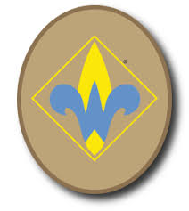 Cub Scout Arrow Of Light Webelos Scout Meritbadgedotorg