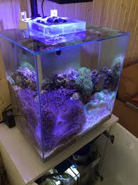 fluval edge marine light fluval edge ii diy reef conversion reef central online community
