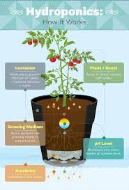 195 best seed starting u0026 tables hydroponics images on pinterest
