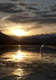 Alaska travel photography images 139 best alaska the last frontier images nature jpg