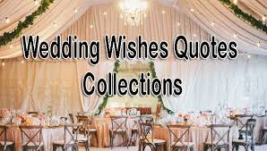 wedding wishes quotes wishing quotes