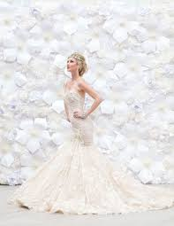 wedding backdrop rentals houston 268 best backdrops for weddings and images on