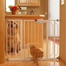 Pet Friendly Area Rugs Modern Indoor Pet Room Ideas For Cat Or Dog U2013 Designing A Cat Room