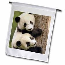 and baby panda garden statue set 2 pc to view further