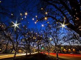 fort collins christmas lights where to get your christmas lights fix in fort collins