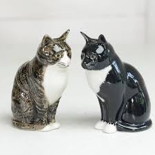 Animal Pots Cat Salt And Pepper Pots By Home U0026 Glory Notonthehighstreet Com