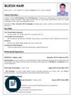 Sample Dot Net Resume For Experienced Dot Net Developer Net Developer Sample Resume Cv